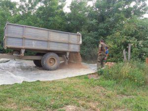 dinkelernte-traktoranhaenger
